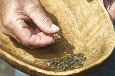Goldschürfen: Hand mit Gold Nugget